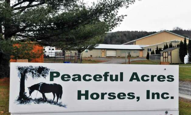 Entrance to Peaceful Acres Horse Farm in Pattersonville, which benefited from a $5,000 Times Union Hope Fund grant during a barn rebuilding project.  (John Carl D'Annibale / Times Union) Photo: John Carl D'Annibale / 00011328A