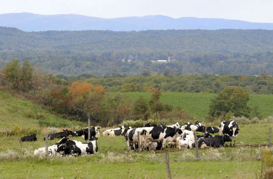 Dairy farmers are concerned about new federal rules limiting upstate dairy farm runoff to preserve Chesapeake Bay, hundreds of miles away.
