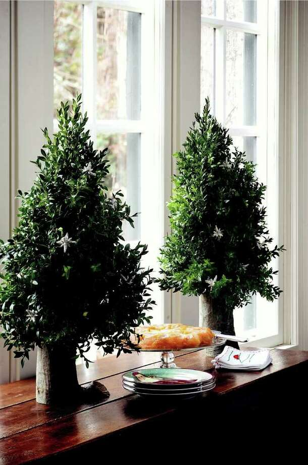 boxwood tabletop trees from Garden Bouquets and Beyond by Suzy Bales / DirectToArchive