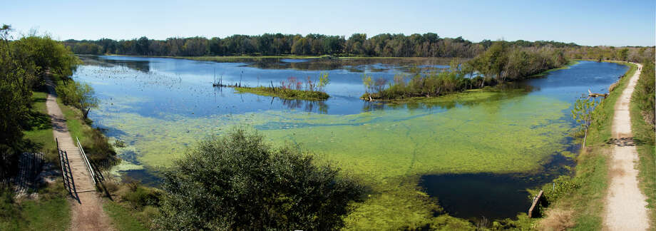 An observation tower on the northeast corner of 40-Acre Lake offers a perfect spot for panoramic photos of the still, algae-coated water. PHOTOS BY JOSHUA TRUDELL / SPECIAL TO THE EXPRESS-NEWS
