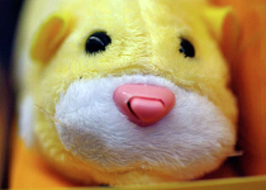 A Zhu Zhu Pets hamster Photo: Getty  / 2009 Getty Images
