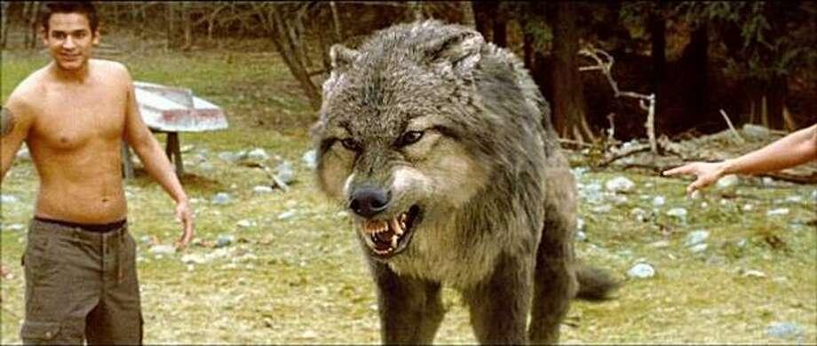 "Tippett Studio animated the wolves in the hit movie ""New Moon."" Photo: /Photo Courtesy Tippett Studio"