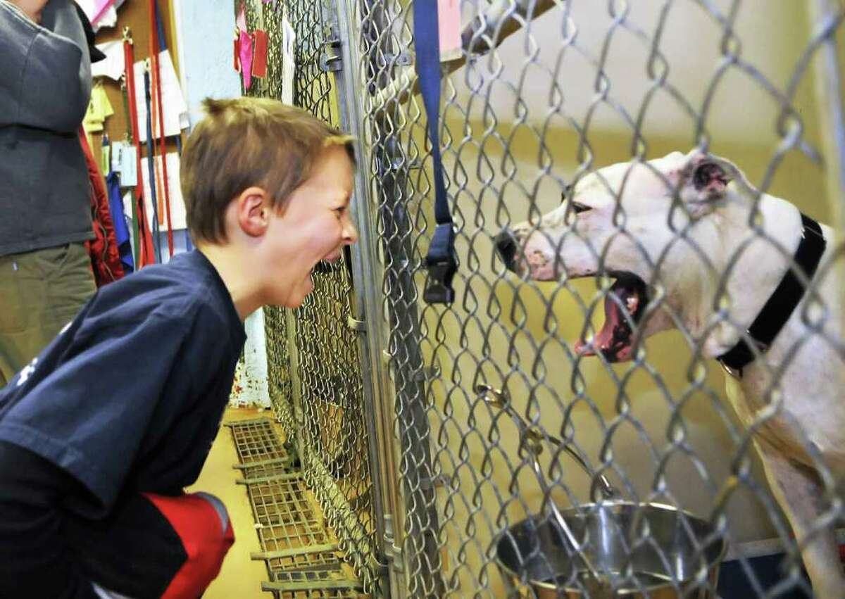 Luke Switzer, 10, a student at Susan Odell Taylor School in Troy, shares a yawn with Chopper during a class tour on Friday of the Mohawk and Hudson River Humane Society in Menands. (John Carl D'Annibale / Times Union)