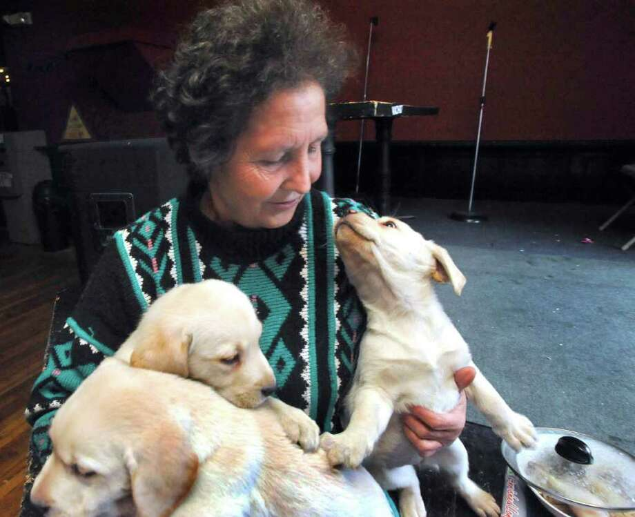 Ibolya Balazs holds her eight-week-old puppies in Danbury Monday, Dec. 20, 2010. The city says her Main Street kennel goes against zoning regulations. Photo: Michael Duffy / The News-Times
