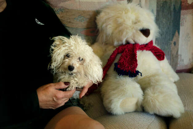 Cassandra Rivera gave the white teddy bear at right to her mother, Margaret Rivera (left), 11 years ago. After Cassandra went to prison, her mother got a white puppy and named it Teddy Bear. (Photo by Bob Owen/Express-News)