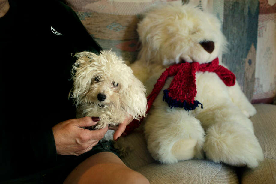One of the women now behind bars, Cassandra Rivera, gave the white teddy bear at right to her mother, Margaret Rivera (left), 11 years ago. After Cassandra went to prison, her mother got a white puppy and named it Teddy Bear.BOB OWEN/rowen@express-news.net