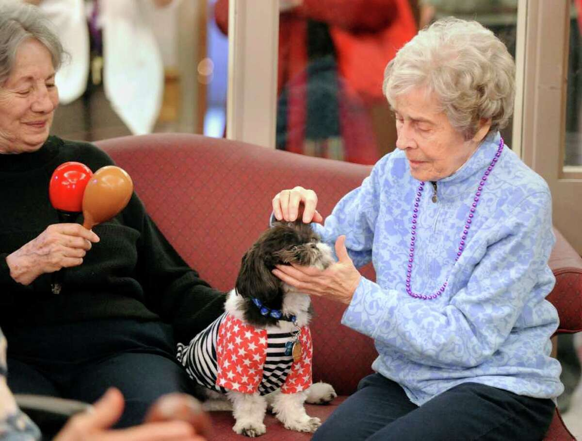 Alzheimer's patient Ruth Santora, right, pets animal therapy dog Mikie at Greenwich Woods Rehabilitation & Health Care Center, Wednesday afternoon, Dec. 22, 2010. At left is Mildred Pinn, who is also an Alzheimer's patient at the Greenwich Woods facility.