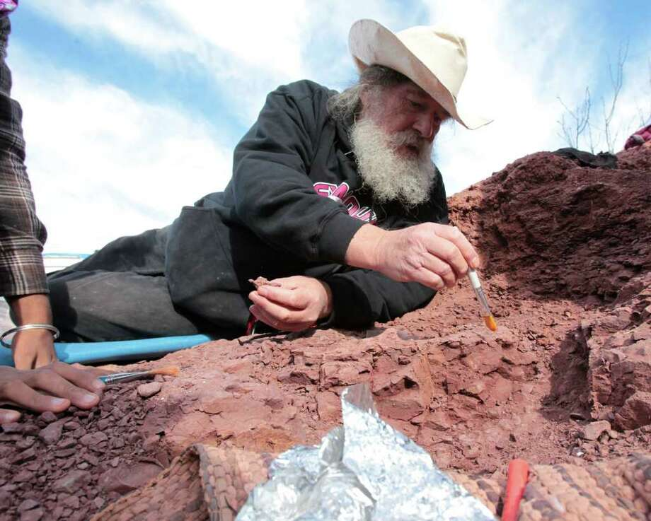 Robert Bakker, a leading paleontology expert, works with a team to excavate a nearly complete Dimetrodon fossil. Photo: JAMES NIELSEN, HOUSTON CHRONICLE