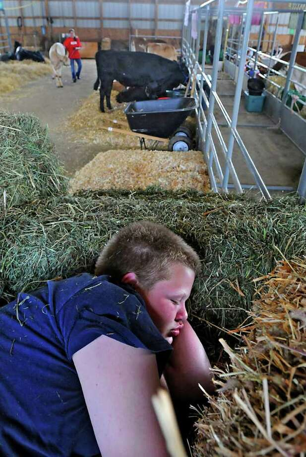 Ryan Britton, age 14, of Berne, takes a nap in the cattle building at the Altamont Fair in Altamont, August 10.  Ryan was up at 3 O'clock this morning milking cows for the Van Wie Dairy Farm before coming to the fair to help. (Lori Van Buren / Times Union) Photo: LORI VAN BUREN / 00005048A