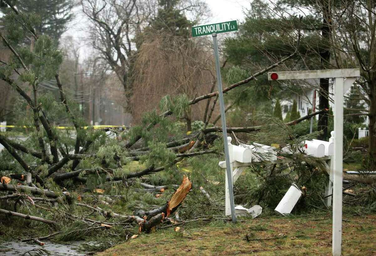 The scene on Tranquility Lane in Westport appeared anything but tranquil after trees and power lines were blown down during Saturday night's storm.