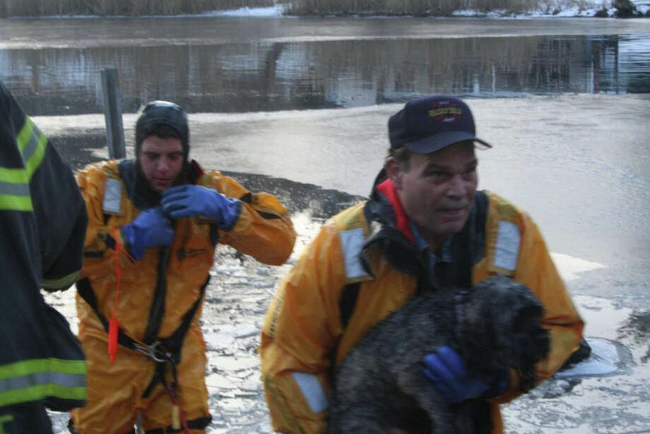Fairfield Firefighter Jim Shiller transfers a dog rescued from the icy Mill River to Firefighter Jack Barrett on Friday afternoon. The dog's owner, who unsuccessfully tried to rescue the animal and other of her dogs after they fell through thin ice, was pulled to safety by a bystander before firefighters arrived on the scene. Photo: Contributed Photo/Fairfield Fire Department / Fairfield Citizen contributed