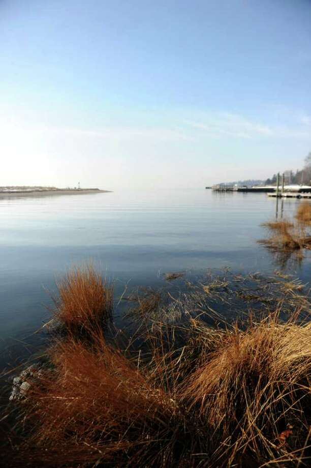 The scenery at Southport Harbor looked misleadingly warm and inviting despite the frigid temperature of the water on Saturday, January 1, 2011. Photo: Lindsay Niegelberg / Connecticut Post