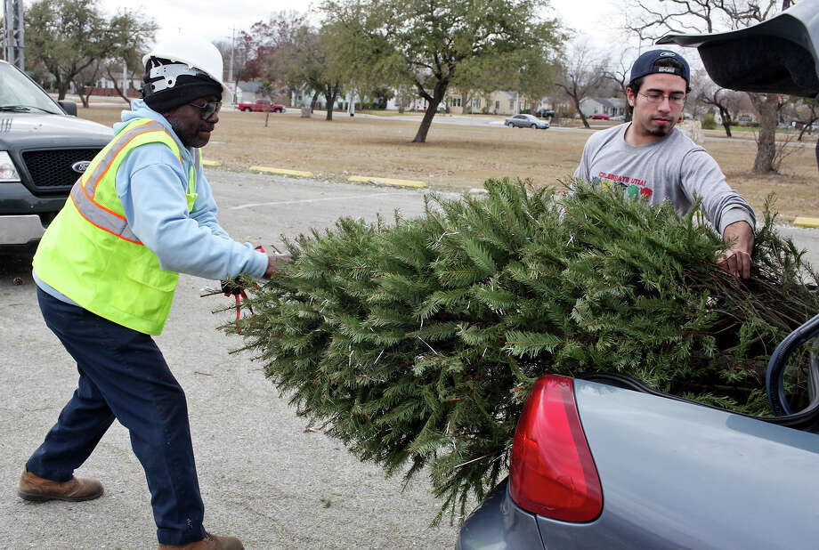 residents drop off christmas trees at city recycling sites