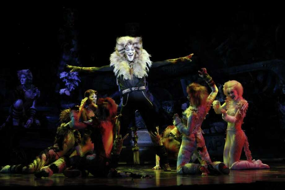 "Matthew J. Taylor, 24, of Nederland, now plays the mischievous Rum Tum Tugger in the traveling production of ""Cats."" Photo taken by Joan Marcus, provided by Troika Entertainment / ©2010, Joan Marcus"