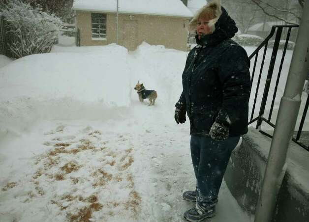 Donna Baske got out early to clear an area for her terrier Joey behind her Maplewood Avenue home in Milford on Wednesday, January 12, 2011. Photo: Brian A. Pounds / Connecticut Post