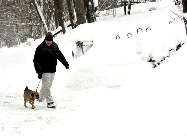 Frank Oleksuik's dog, Bo, is afraid of being lost in the high piles of snow outside his Danbury driveway, Wednesday, Jan. 12, 2010. Photo: Michael Duffy / The News-Times