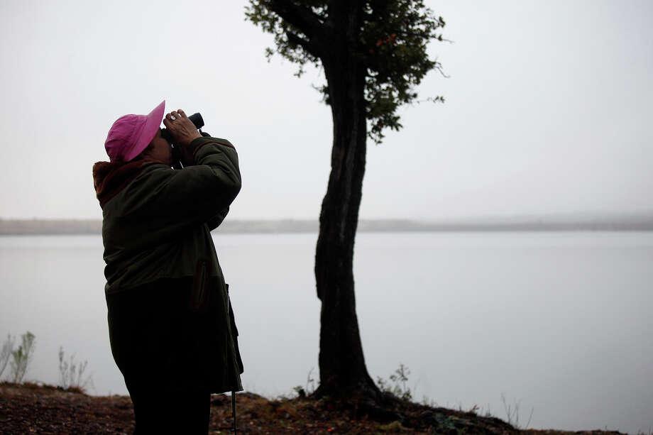 Betty Dunn of Boerne Birders looks for birds as part of an informal bird census at Boerne City Lake. The counts help wildlife experts manage land. Photo: LISA KRANTZ/lkrantz@express-news.net / SAN ANTONIO EXPRESS-NEWS