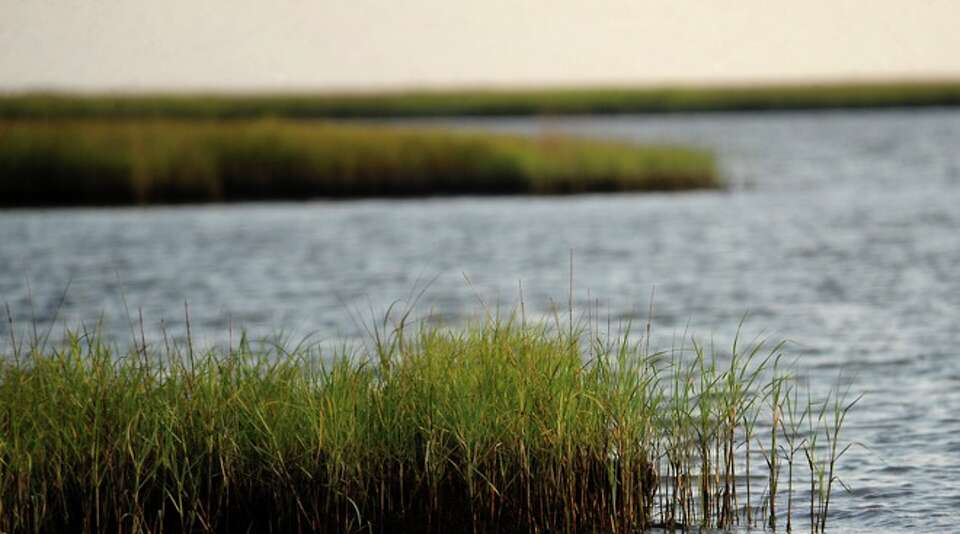 Marsh grasses open up to Kieth Lake in Sabine Pass, Sunday.