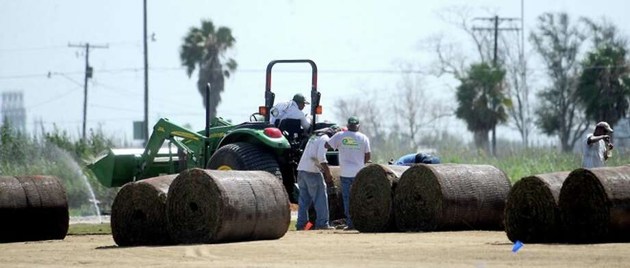 Workers lay new sod on the football field that was damaged during Hurricane Ike as the team practices on the baseball field during the first day of two a day practices at Sabine Pass High School in Sabine Pass, Monday. Photo: TAMMY MCKINLEY