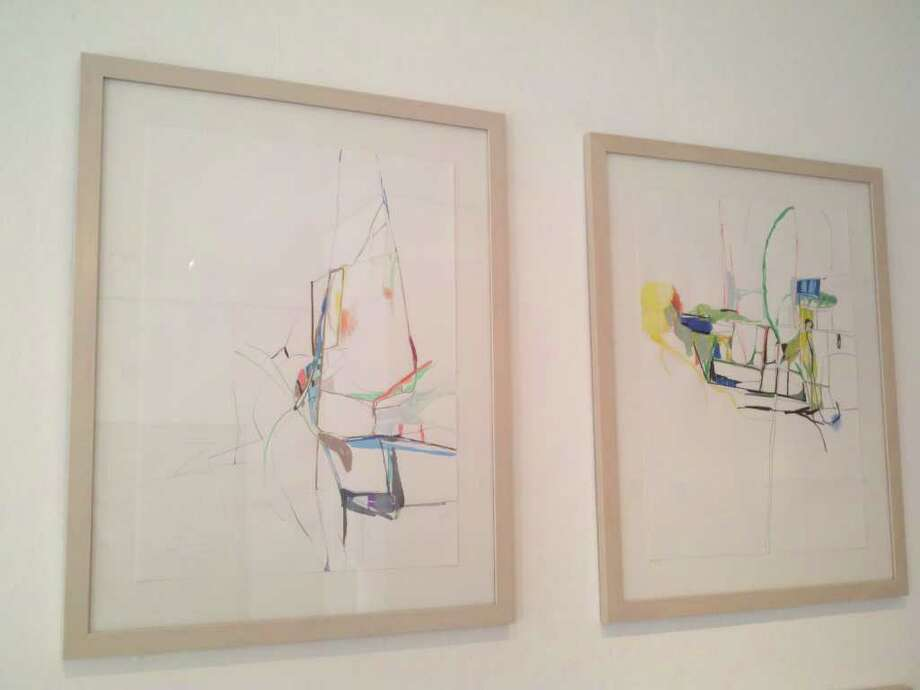 "Drawings from ""A Cultivated Variety"" by Ingrid Ludt. Mixed media on paper. (Michael Janairo / Times Union)"