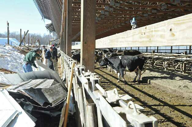 Workers clean up after the roof of a cow barn at the King's Ransom Farm in Northumberland collapsed due to several inches of wet snow. (Lori Van Buren / Times Union) Photo: Lori Van Buren