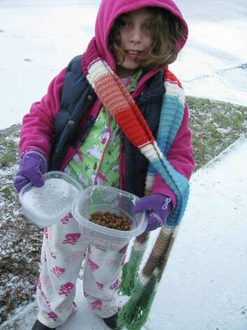 Tati Sigg, 9, left out food and water for strays in the King William District on Friday, Feb. 4, 2011. The water froze overnight. Photo: Michael Quintanilla