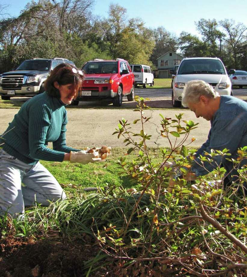 Master Gardeners at work at LAH Photo: Charles Kerr