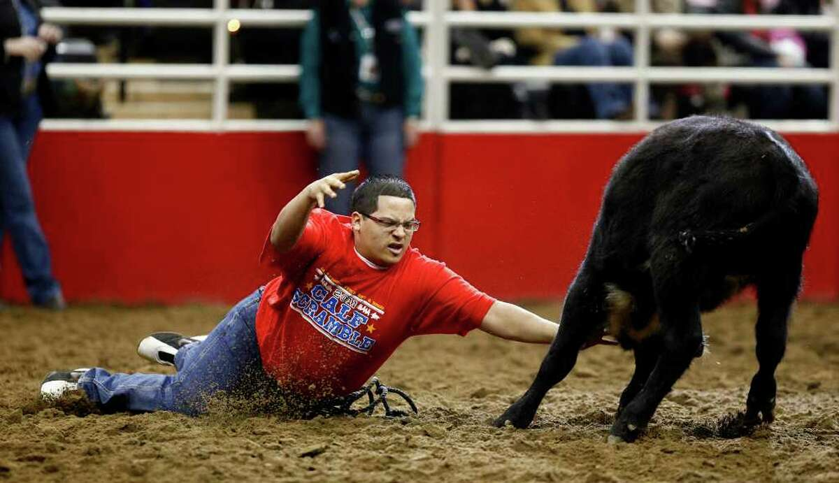 Caden R. Anderson of Bulverde attempts to catch and halter a calf as he competes in the Calf Scramble event during the San Antonio Stock Show & Rodeo on Tuesday, Feb. 8, 2011.