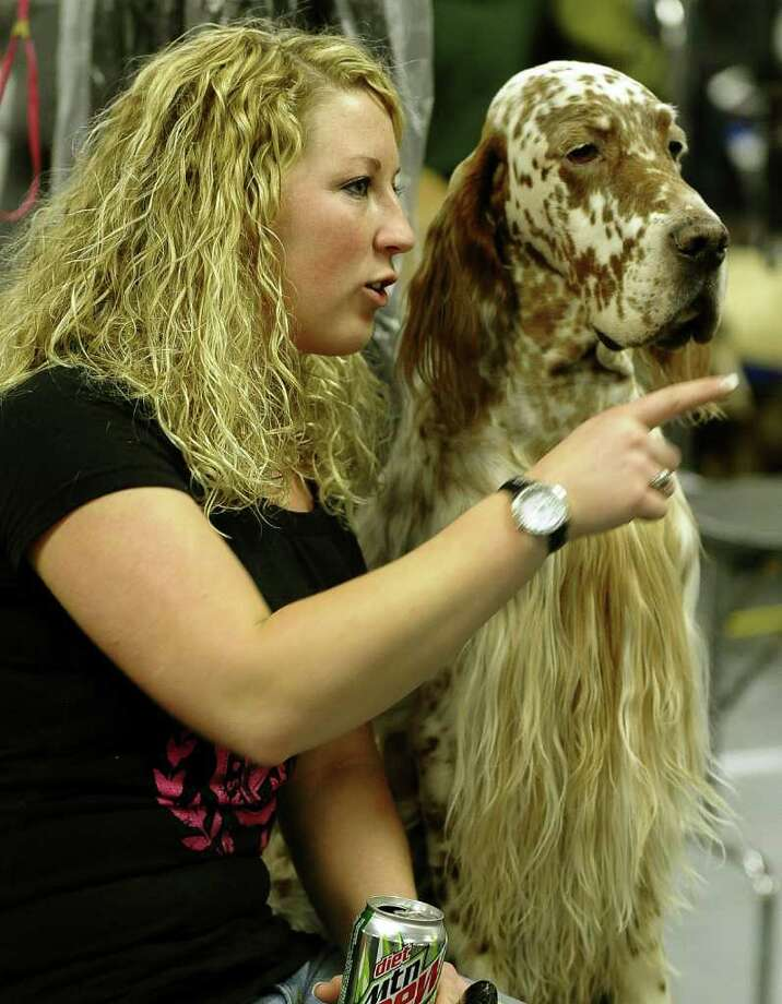 Lindsey Kuhn and Logan her English Setter backstage during the 135th Westminster Kennel Club Dog Show at Madison Square Garden in New York, February 15, 2011. AFP  PHOTO / TIMOTHY A. CLARY (Photo credit should read TIMOTHY A. CLARY/AFP/Getty Images) Photo: TIMOTHY A. CLARY