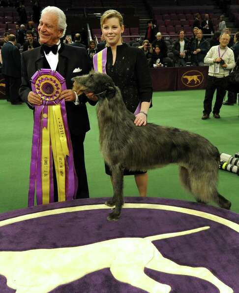 Handler Angela Lloyd and Hickory the Scottish Deerhound pose for photos after winning Best in Show d