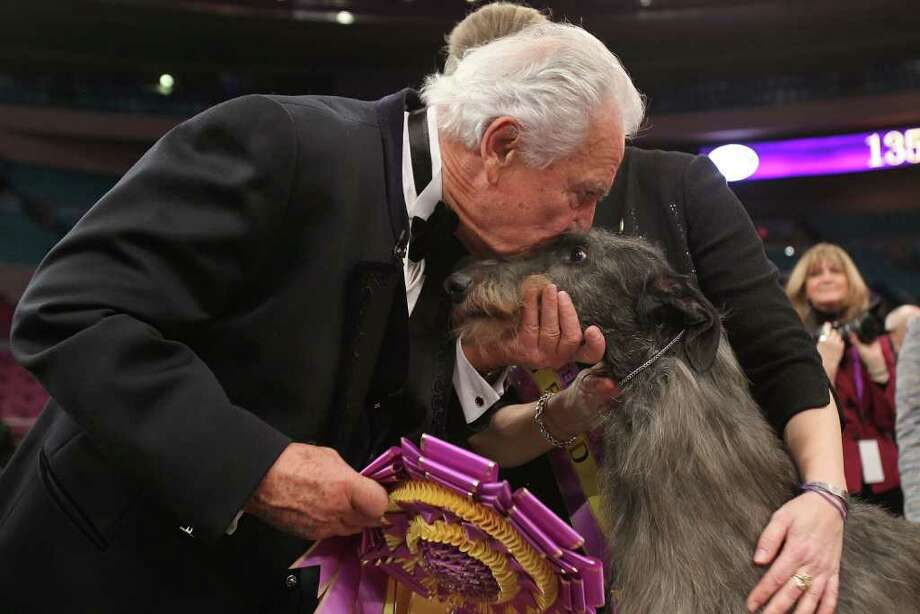 NEW YORK, NY - FEBRUARY 15: A Scottish Deerhound named Foxcliffe Hickory Wind receives a kiss from show judge Paolo Dondina after winning Best in Show at the Westminster Kennel Club Dog Show on February 15, 2011 in New York City. The show, one of the most prestigious dog shows in the world, is being held at Madison Square Garden in New York City on February 14-15. Over 2,000 dogs competed in this year's show which also included six new breeds to the competition.  (Photo by Spencer Platt/Getty Images) *** Local Caption *** Paolo Dondina Photo: Spencer Platt, Getty Images / 2011 Getty Images