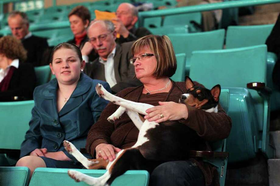 NEW YORK, NY - FEBRUARY 14: Cali Shattuck (Left) and her motherCindy watch the Westminster Kennel Club Dog Show with their dog Nile before he is to compete at Madison Square Garden on February 14, 2011 in New York City. The show, one of the most prestigious dog shows in the world, is being held on February 14-15. Over 2,000 dogs will be competing in this year's show which will also include six new breeds to the competition.  (Photo by Spencer Platt/Getty Images) Photo: Spencer Platt, Getty Images / 2011 Getty Images