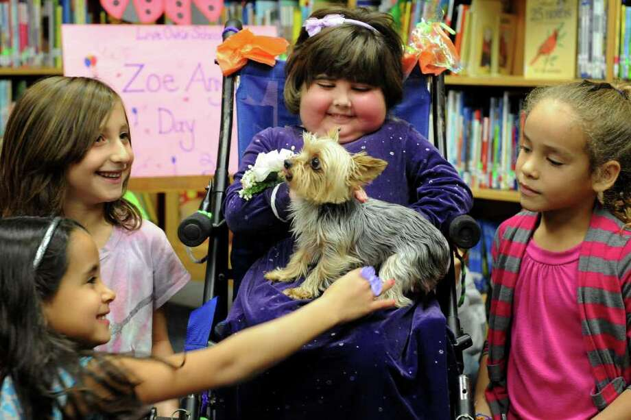 Zoe Anyan pets Dudley, her teacher's dog, as she shares a moment with classmates at Live Oaks School in Milford, Conn. Friday, Nov. 5th, 2010. Zoe Anyan, 7, died Wednesday Feb 16, 2011 at Boston Children's Hospital with her family around her, family spokesman Daphne Main said. The news of a little girl's death from an aggressive brain tumor, though not unexpected, rippled through the commuity that loved her. Photo: Ned Gerard / Connecticut Post