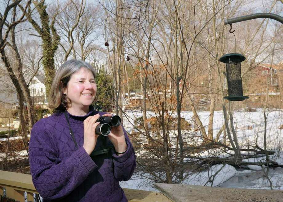 Riverside birdwatcher Cynthia Ehlinger, with binoculars at the ready, watches for birds at the bird-feeders in her backyard, Thursday afternoon, Feb. 17, 2011.  Ehlinger is preparaing for this weekend's Great Backyard Bird Count. Photo: Bob Luckey / Greenwich Time