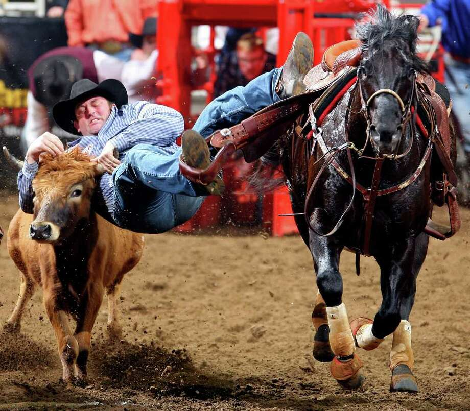 "Shane Henderson won his steer-wrestling round at Thursday's San Antonio Stock Show & Rodeo in 4 seconds and raised his earnings to $8,296.67, the most made by anyone to this point. ""It's unbelievable how good this rodeo has been,"" the Winfield, Kan., cowboy said. Photo: EDWARD A. ORNELAS, SAN ANTONIO EXPRESS-NEWS / eaornelas@express-news.net"