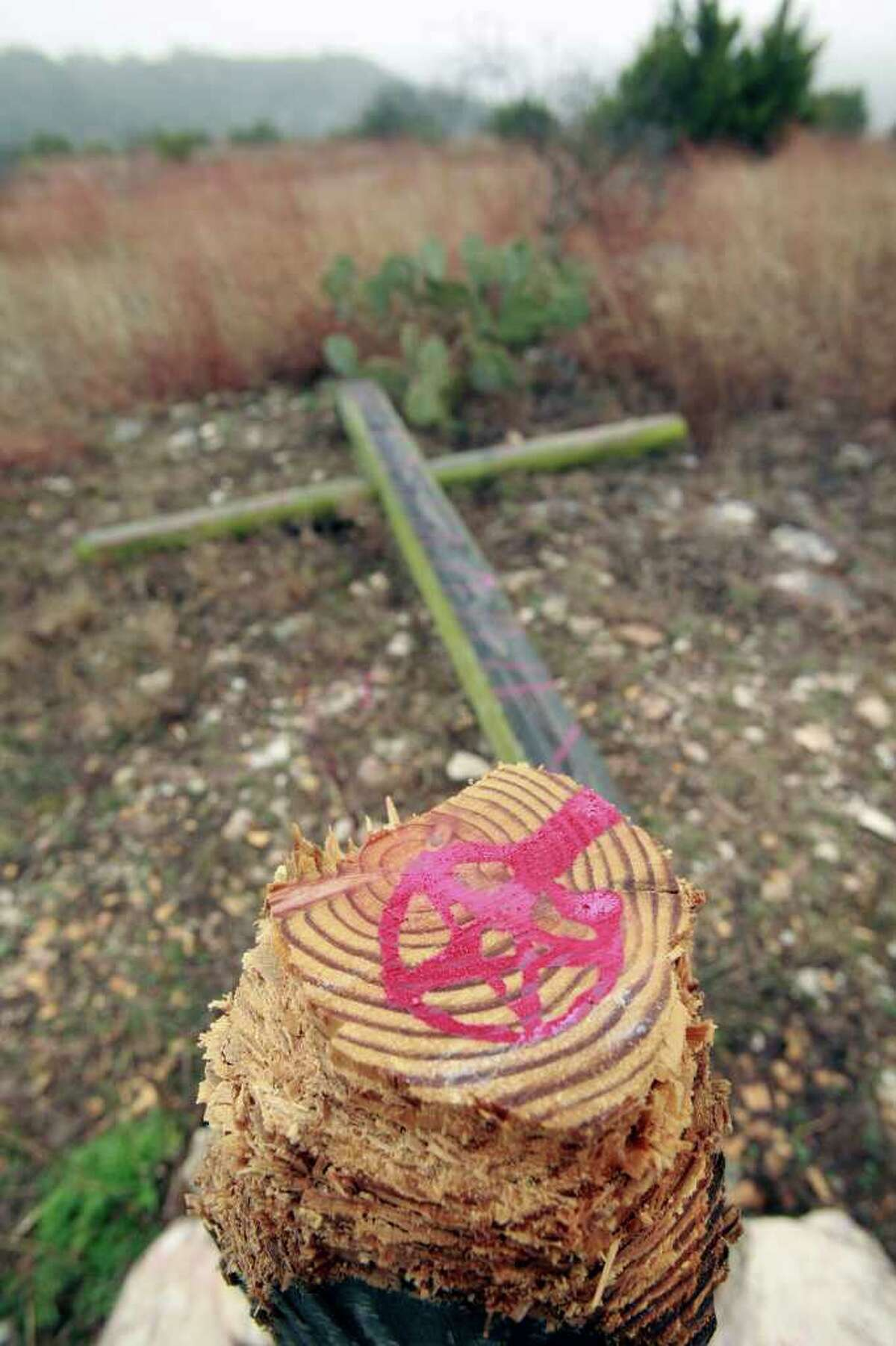 Red pentagrams were painted on the stumps of three wooden crosses cut down in Boerne. The vandalism was discovered Feb 13.
