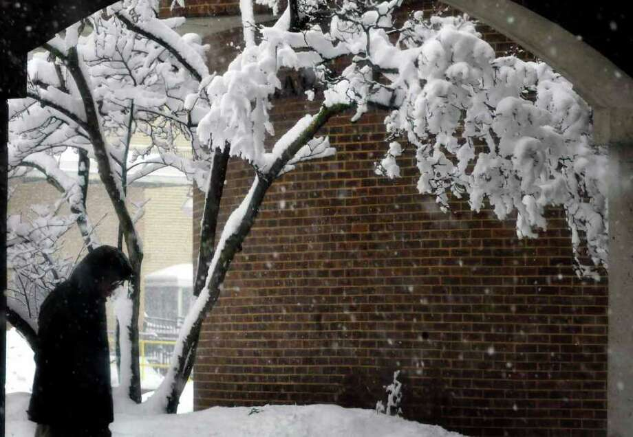Wet, heavy snow accumulates on a tree outside the Schenectady County Library in Schenectady Friday Feb. 25, 2011. ( Michael P. Farrell/Times Union ) Photo: Michael P. Farrell