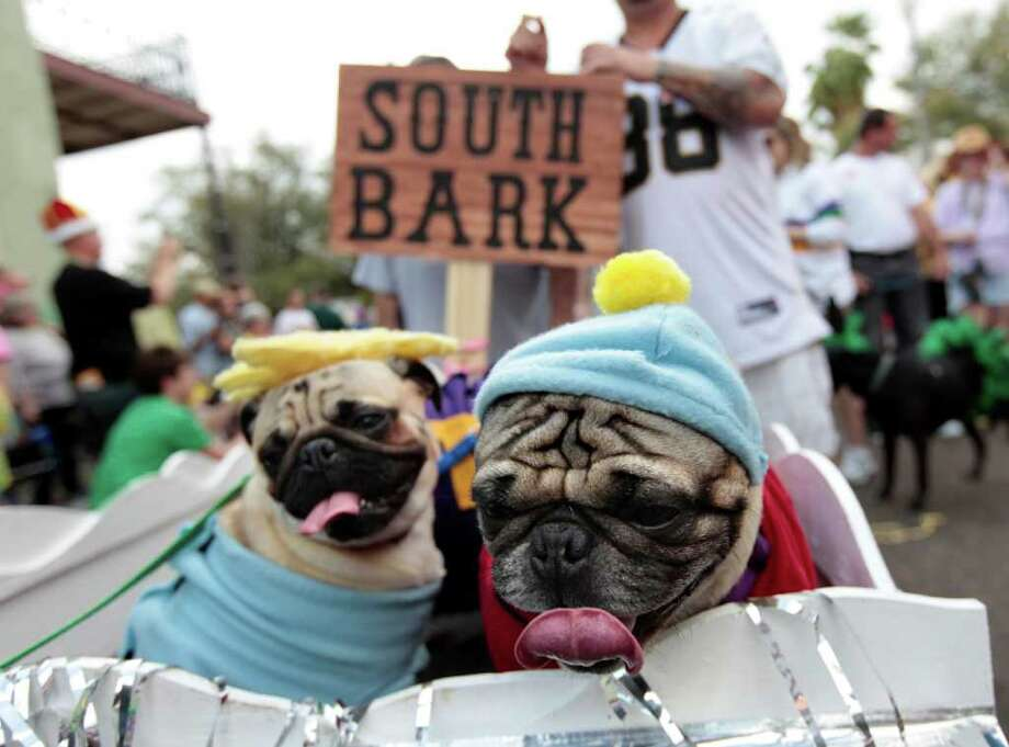"Dogs dressed as characters from ""South Park"" are paraded through the French Quarter during the Krewe of Barkus Mardi Gras parade in New Orleans, Sunday, Feb. 27, 2011. The parade of dogs and their owners, a twist on the Krewe of Bacchus, benefits animal welfare organizations. (AP Photo/Gerald Herbert) Photo: Gerald Herbert"