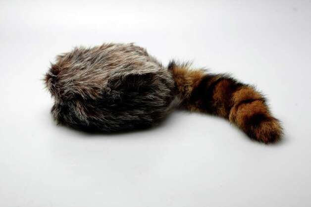 SA LIFE:  Coonskin Cap from  the Alamo gift shop.  HELEN L. MONTOYA/hmontoya@express-news.net Photo: HELEN L. MONTOYA / San Antonio Express-News