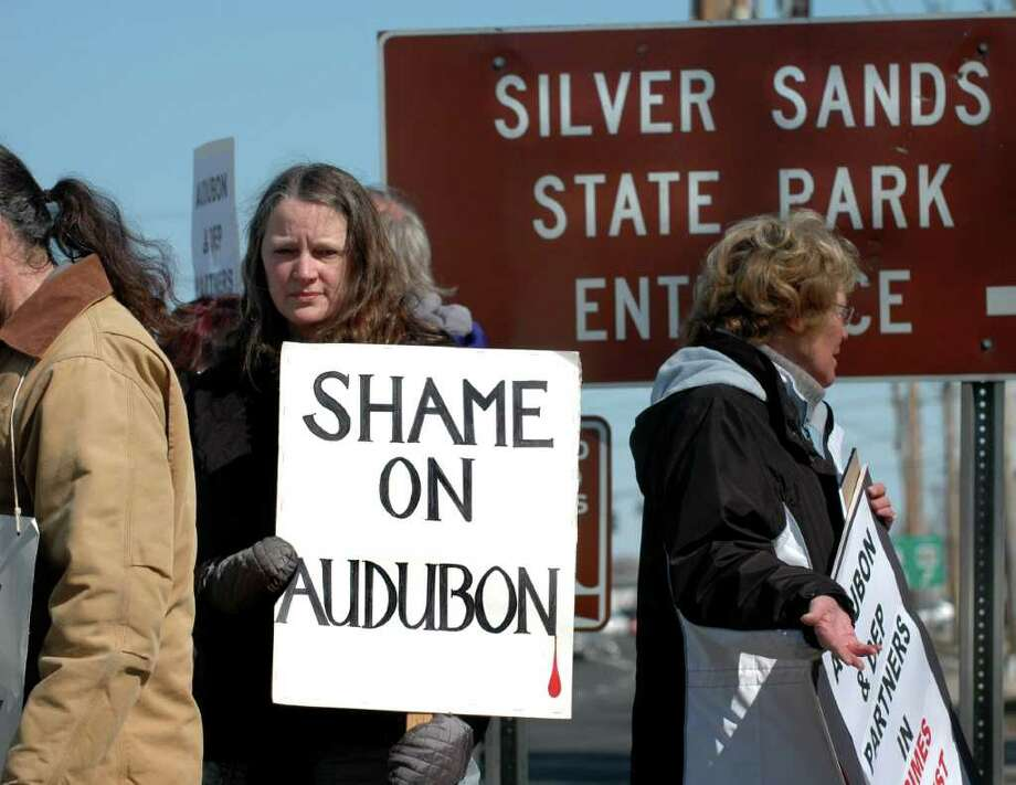 Outraged at the recent killing of 17 deer on Charles Island, Arlene Corey of Seymour and other supporters of Friends of Animals held a protest at the entrance to Silver Sands State Park in Milford on Friday, March 4, 2011. Photo: Cathy Zuraw / Connecticut Post
