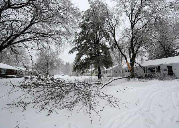 A large, snow-covered tree took down power lines Monday before it came to rest across 65 Lawnridge Ave. in Albany. (Skip Dickstein / Times Union) Photo: SKIP DICKSTEIN