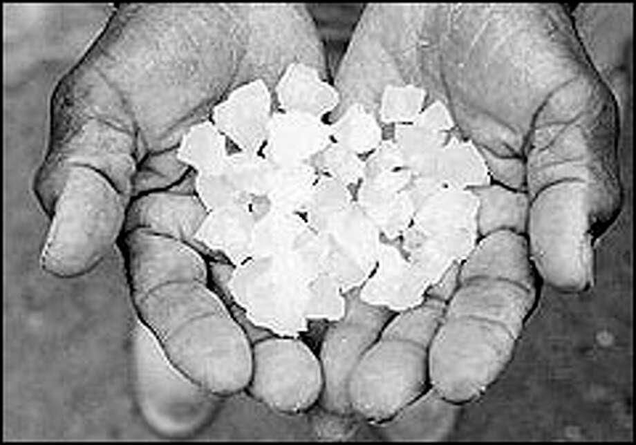 Norwell Durant holds salt harvested on Salt Island. Durant is the last of the island's sea salt harvesters. Photo: P-I