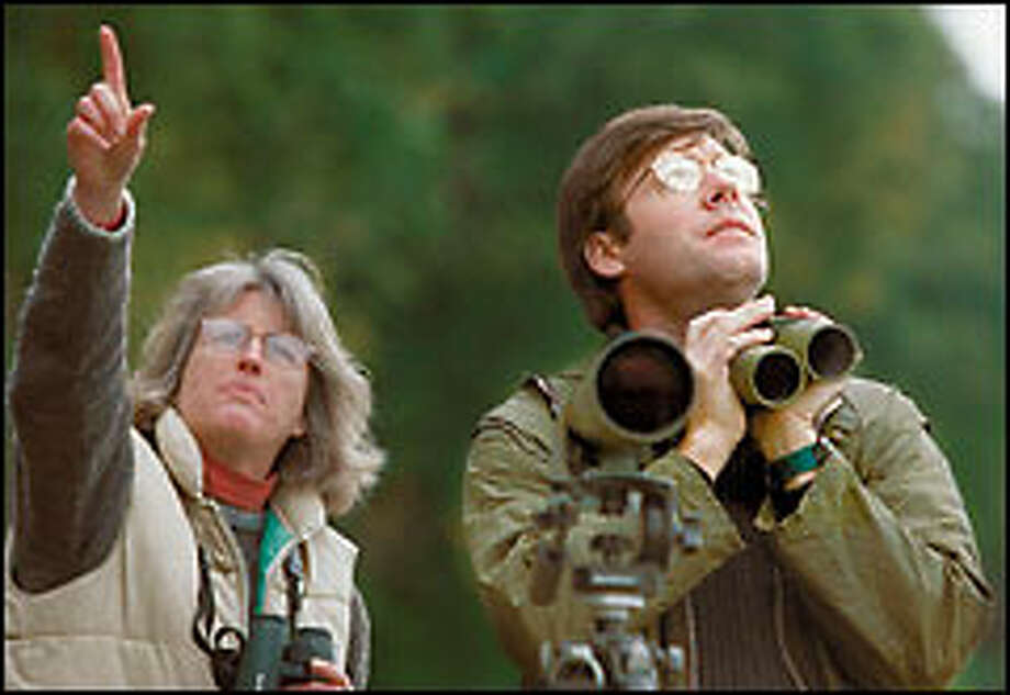 Author David Sibley and Tahoma Audobon Society member Sue Trevathan scan the Vashon Island sky for feathered friends. Photo: Melina Mara/P-I