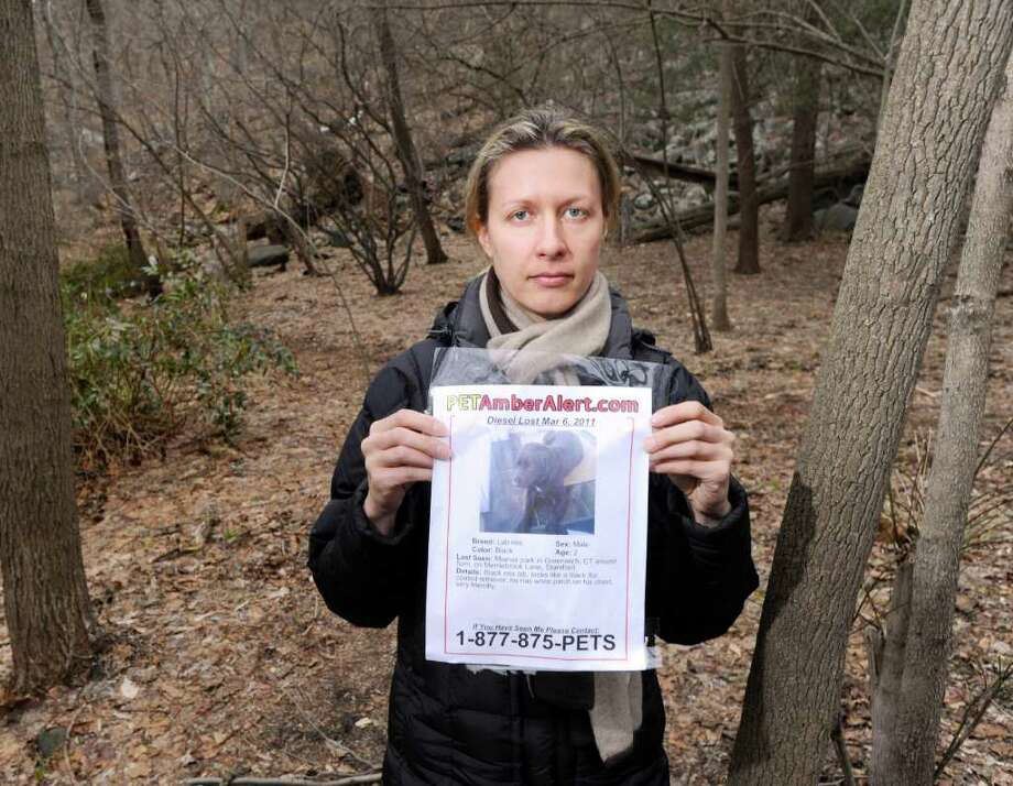 Marcela Krejsova of Stamford holds a missing dog poster of her black Labrador retriever mix, Diesel, in MIanus River Park, Stamford, Wednesday afternoon, March 9, 2011.  Krejdova's dog went missing in the Stamford section of the park near Greenwich on Sunday, March 6, when he got off his leash to chase a group of deer. Photo: Bob Luckey / Greenwich Time