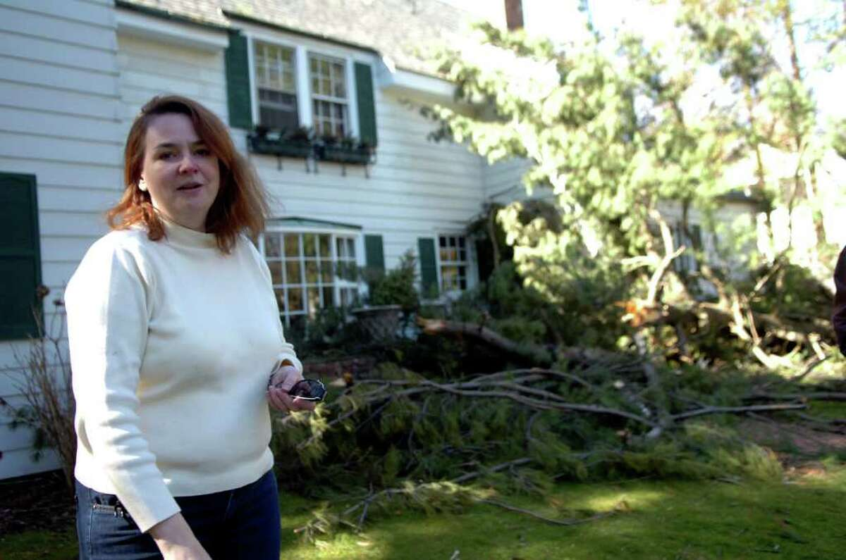 Victoria Aiello had a tree fall on her Park Avenue house during the March 13, 2010, storm.