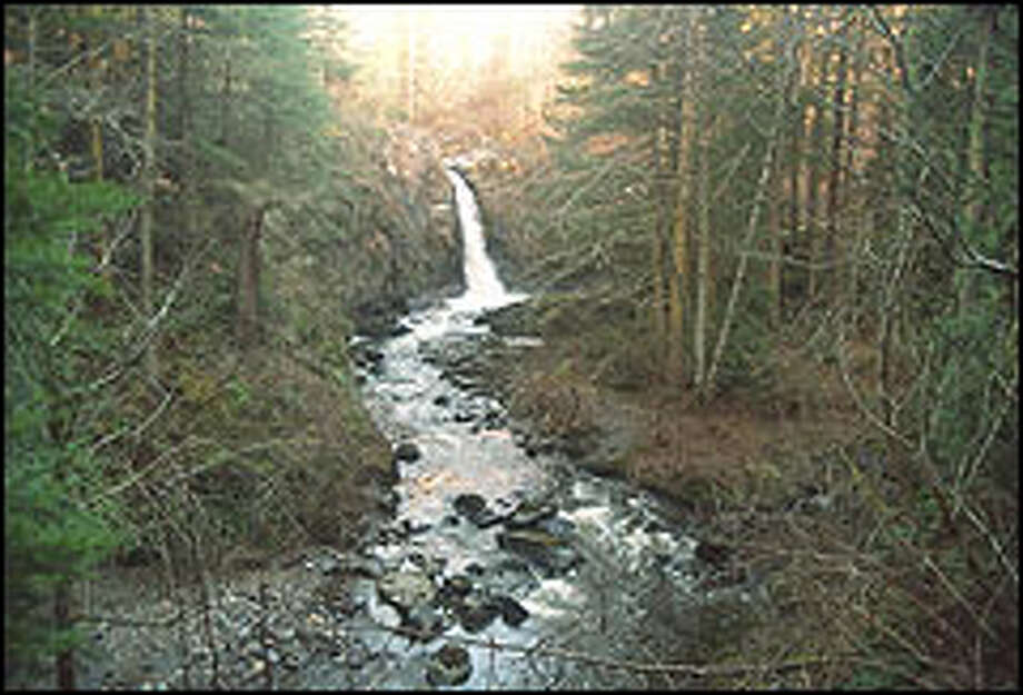 Little Mashel Falls is one of several lovely cascades that grace the Pack Experimental Forest, a 4,400-acre outdoor laboratory near Eatonville managed by the University of Washington. There's even a miniature Pack Forest for kids. Photo: KAREN SYKES