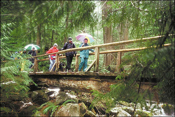 Members of the Central Puget Sound chapter of the Washington Native Plant Society stroll across a bridge on the Asahel Curtis trail into a grove of old western red cedar, Douglas fir and western hemlock.