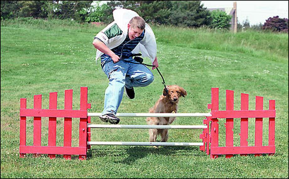 Helper Dogs For Sale