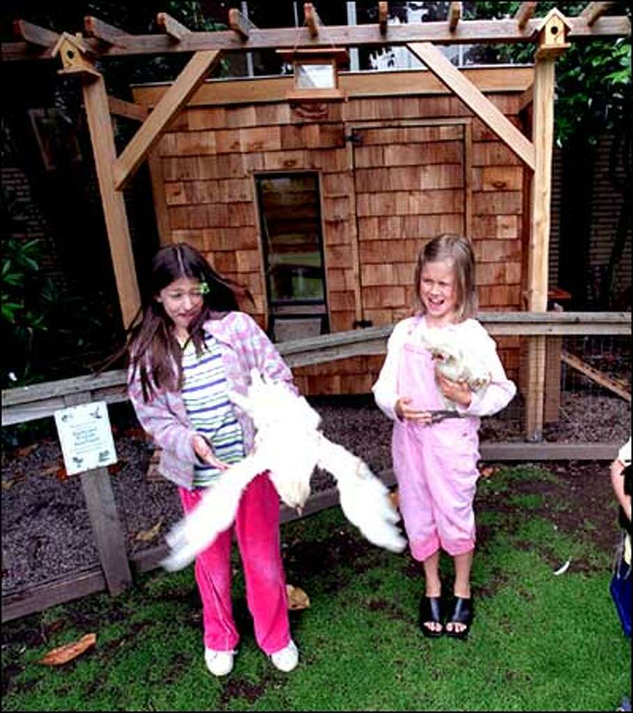 chickeneers u0027 pack poultry classes and build trendy coops for