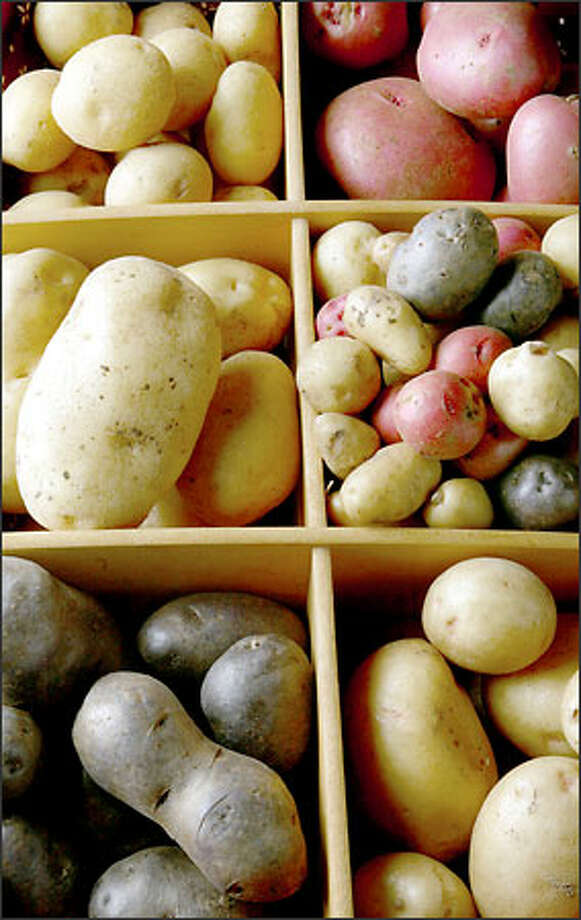 It's not hard to dig up a variety of potatoes at local stores, such as (clockwise from bottom left) the All Blue, Yellow Finn, German Butterball, Chieftain, mixed baby potatoes and Yukon Gold. Photo: Paul Kitagaki Jr./Seattle Post-Intelligencer